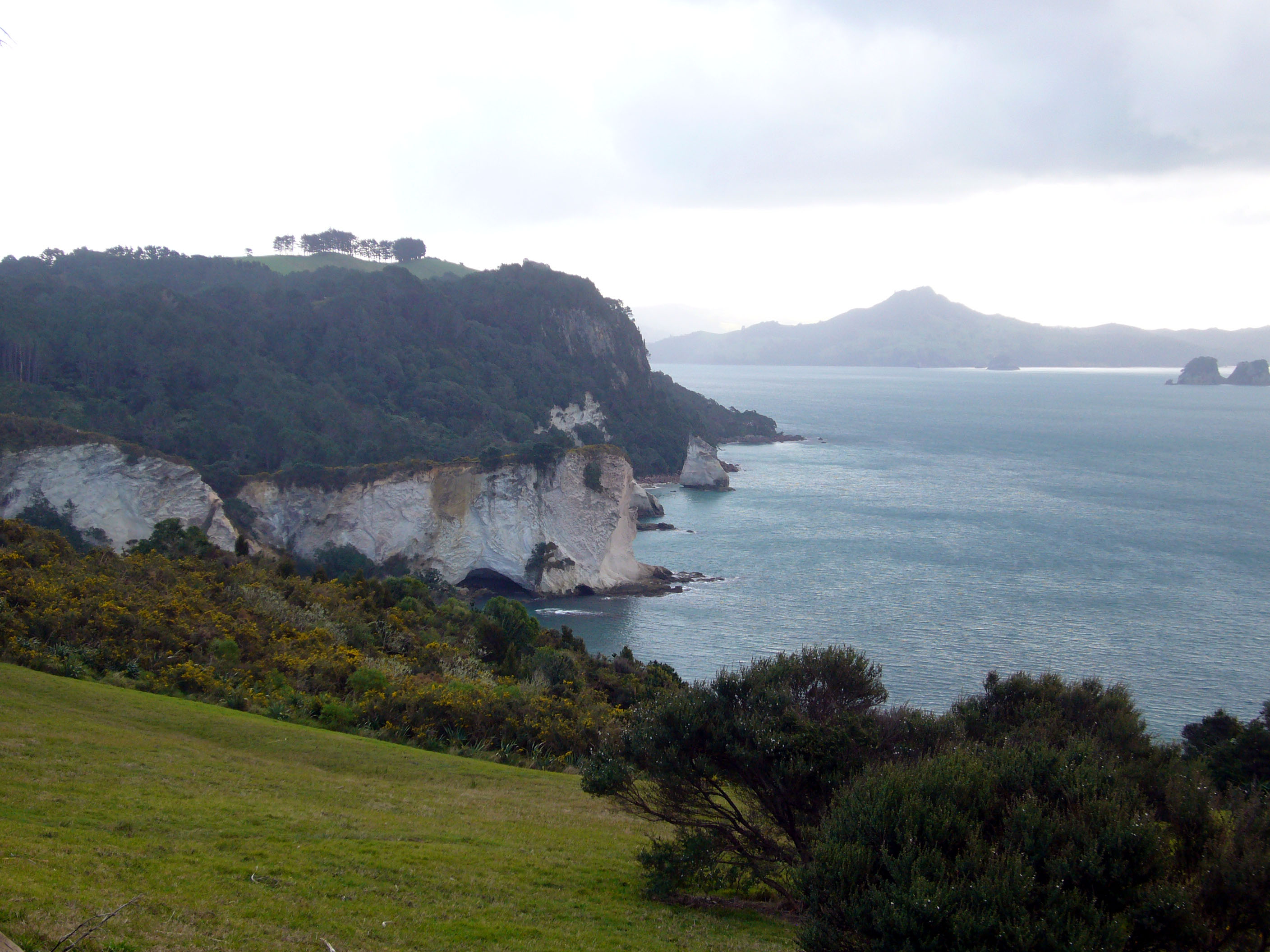 Stingray bay and cathedral cove for Coastal motor lodge thames