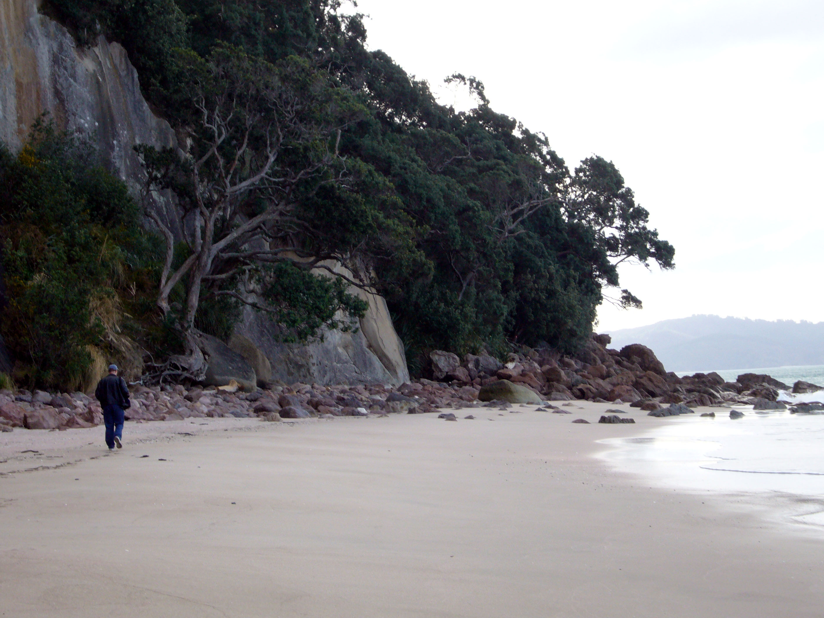Cathedral cove for Coastal motor lodge thames